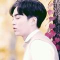 double Prince (@kimjuncotton) Avatar