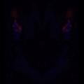 YHTAK (@wolfaphrodite) Avatar