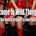 Wild Thingz Entertainment (@charlottestrippers) Avatar