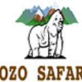 Zozo Safaris (@zozosafaris) Avatar