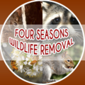 Four Seasons Wildlife Removal (@wildliferemoval) Avatar