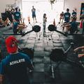 Toshavi's fitness and wellness center  (@vivek99) Avatar