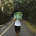 Guto Cesar  (@gutocesar) Avatar