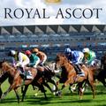 Royal Ascot 2018 (@royalascot) Avatar