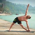Yoga Teacher Training  (@vinyasayoga) Avatar