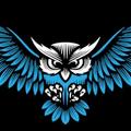 Owl Web  (@owlweb) Avatar