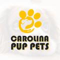 Carolina Pup Pets (@carolinapuppets95) Avatar