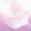 tulimond (@tulimond) Avatar