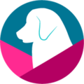Besty Dog Collars (@bestydogcollars) Avatar