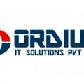 ordius it solutions (@ordiusits) Avatar