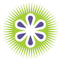 Kiwi energy scam (@kiwienergy) Avatar