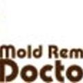Mold Removal Doctor Miami (@moldremovaldoctor) Avatar