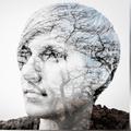 Stefania Carli (@stefcarli) Avatar