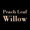 Peach Leaf Willow (@plw) Avatar