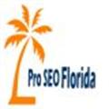 Pro Florida SEO Service (@seoflorida11) Avatar