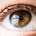 Dry Eye Treatment Miami (@dryeyetreatmentmiami) Avatar