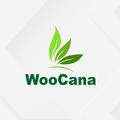 WooCana (@cbdoilcannabisfl) Avatar