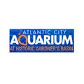 AC Aquarium (@acaquarium1) Avatar