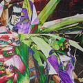 Furotti (@furotti) Avatar