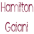 Hamilton Gaiani (@hamiltongaiani8) Avatar