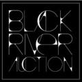 Black River Auction (@blackriverauction) Avatar