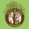 Best and Less Tree Services	 (@bestandlesstree) Avatar