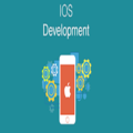 iOS development companies (@iosdevelopersca) Avatar