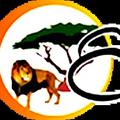 Enrico's Tours and Safaris (@enricosafaristour) Avatar