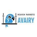 HeavenParrotsAviary (@heavenparrotsaviary) Avatar
