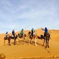 Berber way Morocco tours (@berberwaymoroccotours) Avatar