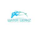 Water Werkz Premium Auto Detailing (@waterwerkzny) Avatar