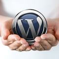 WORDPRESS DEVELOPER NLINE (@wordpressdeveloper096) Avatar