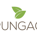 Pungao (@pungao) Avatar