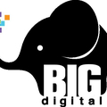 Big Digital (@bigdigital) Avatar