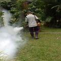 ProServ Pest Control (@proservpest) Avatar