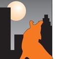 Urban Wildlife Co (@urbanwildlifecontrol) Avatar