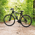 Seguros de bicicleta (@mendiaval) Avatar