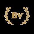 BVlogs (@bvlogs) Avatar