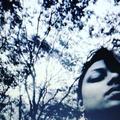 Resg (@reshmashrenipat) Avatar