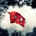 Türk Bayrakları (@turkbayraklari) Avatar