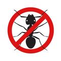 Ant Control (@coantntrol) Avatar