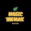 Music (@musictremax) Avatar