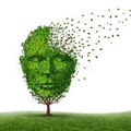 Alzheimers  (@alzheimerscare) Avatar