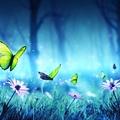 @theuns Avatar