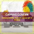 CanvasComVN (@canvascomvn) Avatar