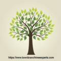 Town Branch Tree Expert (@townbranchtreeexpert) Avatar
