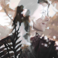 Molly Kate (@mollykate) Avatar