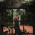Marcin (@thesnapshots) Avatar
