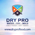 Dry Pro Water Fire Mold Inc (@dryproflood) Avatar