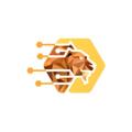Lion's Share International (@lionsshareinternational) Avatar